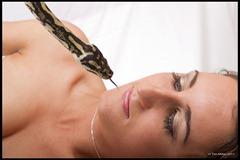 2011-07-30 Snakes shoot 189