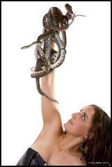 2011-07-30 Snakes shoot 428