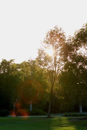 2012-04-01 Narangba Park 051